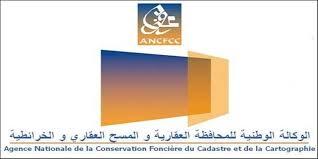 ANCFCC LOGO 3