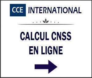 calcul_cnss